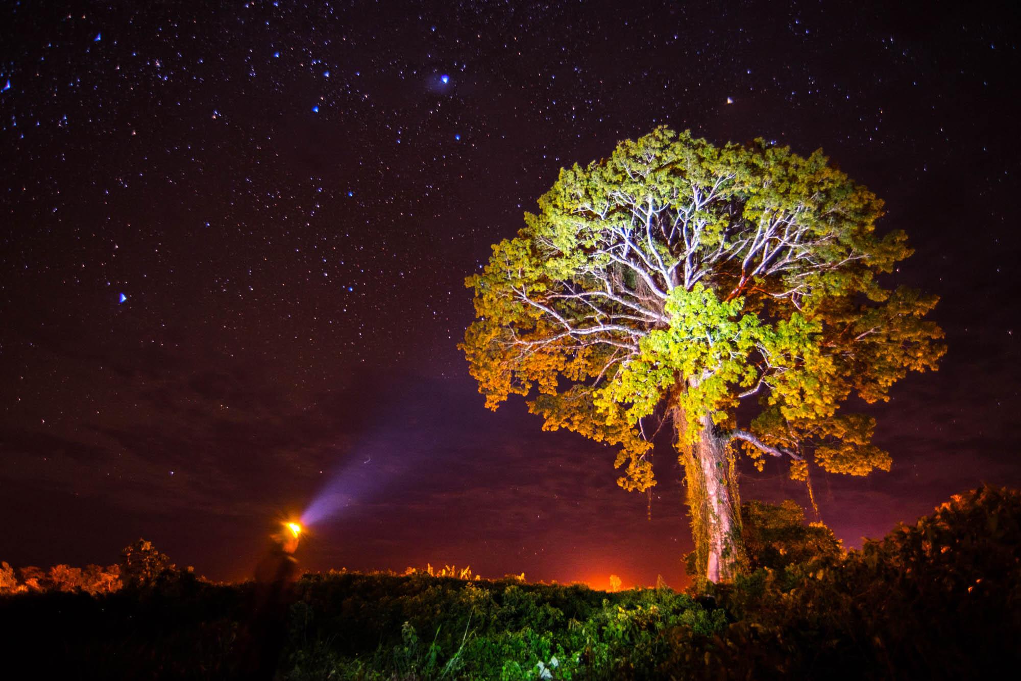 Night Photography Squamish Photographers
